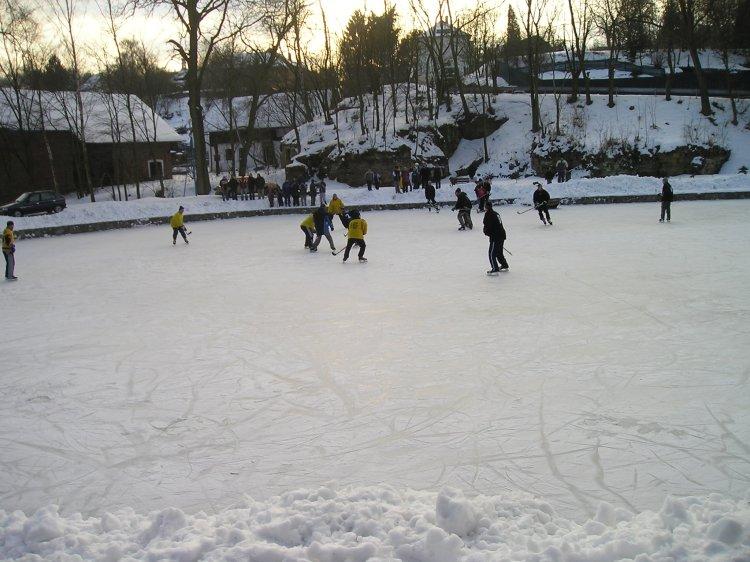 hokej004.jpg