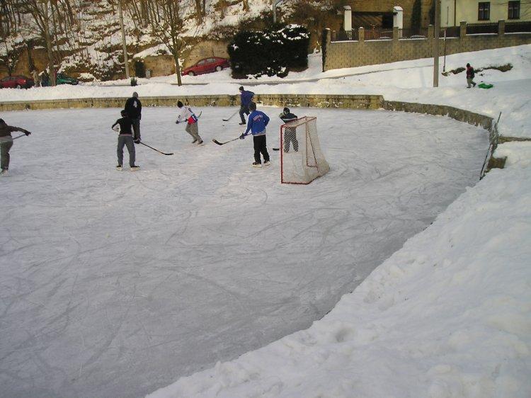 hokej006.jpg